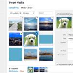 IDOLTV Một số lỗi thường gặp Wordpress 13