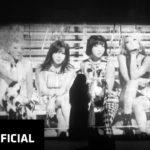 IDOLTV Thành Viên 2NE1