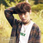 Idoltv Profile thông tin thành viên chan nhóm nhạc ACE k-pop